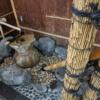 桂川PAの水琴窟:旅の暮らしで見つけたもの